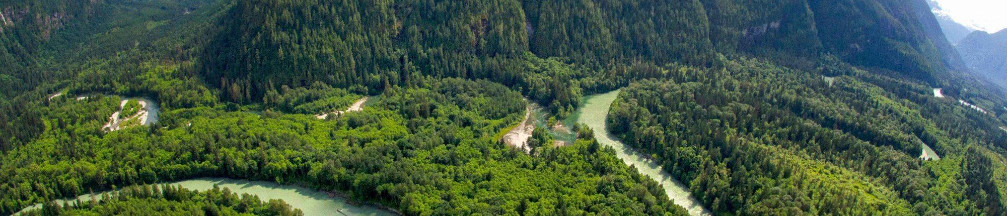 001_Im Toba Valley befindet sich der unitrans Hauptvogel Wald 2014