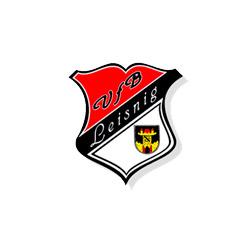 vfb-leising-logo
